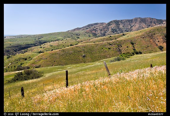 Grasslands, fence and hill ridges, Santa Cruz Island. Channel Islands National Park (color)