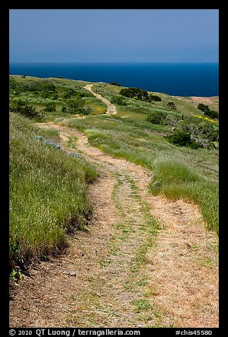 Winding dirt road and ocean, Santa Cruz Island. Channel Islands National Park (color)
