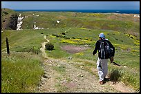 Hiker on trail in the spring, Santa Cruz Island. Channel Islands National Park, California, USA. (color)