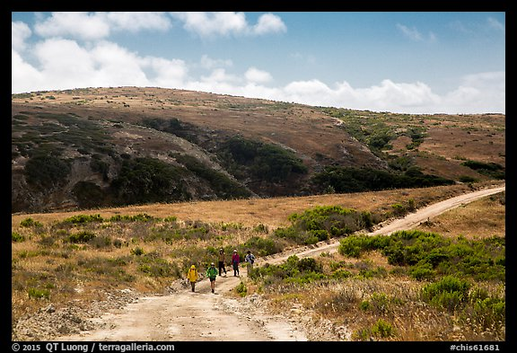 Hikers on road, Santa Rosa Island. Channel Islands National Park (color)