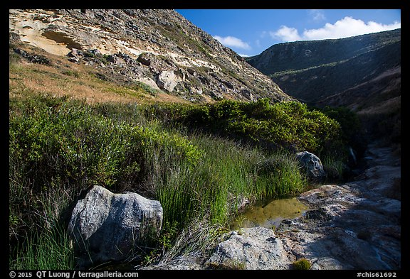 Year-round stream, Lobo Canyon, Santa Rosa Island. Channel Islands National Park (color)