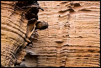 Detail of water-sculptured canyon wall, Lobo Canyon, Santa Rosa Island. Channel Islands National Park ( color)