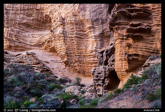 Base of sculpted sandstone cliffs, Lobo Canyon, Santa Rosa Island. Channel Islands National Park (color)