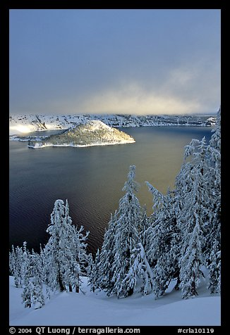 Lake and Wizard Island, winter sunrise. Crater Lake National Park (color)