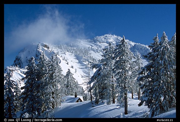 Trees, cabin, and Mt Garfield in winter. Crater Lake National Park, Oregon, USA.