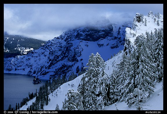 Trees and cliffs in winter. Crater Lake National Park (color)