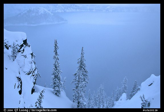 Trees and mistly lake in winter. Crater Lake National Park, Oregon, USA.