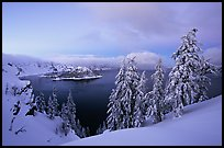 Wizard Island and Lake at dusk, framed by snow-covered trees. Crater Lake National Park, Oregon, USA. (color)