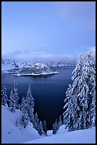 Wizard Island and Lake at dusk, framed by snow-covered trees. Crater Lake National Park ( color)