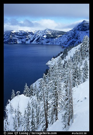 Cliffs, conifer trees, and lake in winter with cloudy skies. Crater Lake National Park (color)