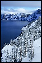 Cliffs, conifer trees, and lake in winter with cloudy skies. Crater Lake National Park, Oregon, USA.