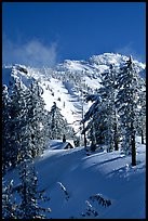 Cabin in winter with trees and mountain. Crater Lake National Park, Oregon, USA.