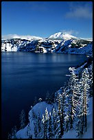 Lake rim in winter with blue skies. Crater Lake National Park, Oregon, USA.
