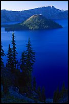 Conifer trees, Lake and Wizard Island. Crater Lake National Park, Oregon, USA.