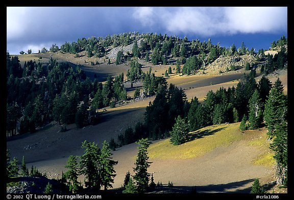 Volcanic hills and pine trees. Crater Lake National Park, Oregon, USA.
