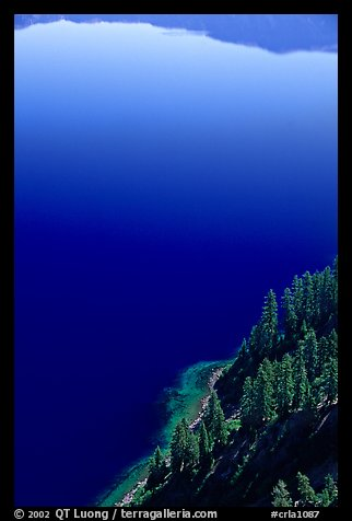 Trees and blue lake waters. Crater Lake National Park (color)