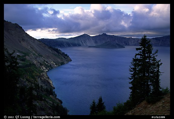 Tree, lake and clouds, Sun Notch. Crater Lake National Park, Oregon, USA.