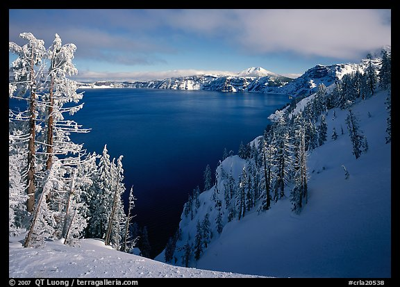 Snow-covered trees and dark lake waters. Crater Lake National Park (color)