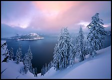 Snowy trees and lake with low clouds colored by sunset. Crater Lake National Park, Oregon, USA.