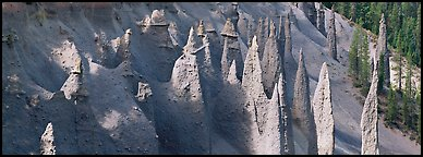 Cluster of volcanic columns. Crater Lake National Park, Oregon, USA.