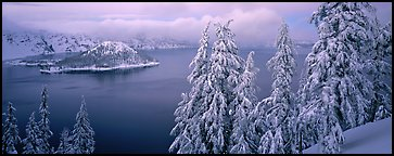 Snowy trees, lake, and Wizard Island. Crater Lake National Park, Oregon, USA.