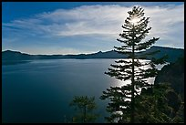 Lake and sun shining through pine tree, afternoon. Crater Lake National Park, Oregon, USA.