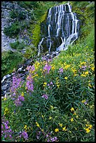 Vidae Falls and wildflowers. Crater Lake National Park, Oregon, USA.