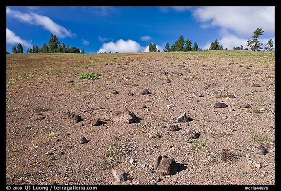 Pumice plain. Crater Lake National Park (color)