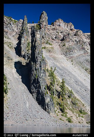 Devils Backbone, vertical dike of dark andesite lining the cliff face. Crater Lake National Park (color)