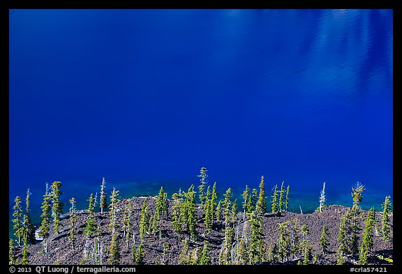 Hemlock trees on lava rocks bordering blue waters of Skell Channel, Wizard Island. Crater Lake National Park (color)