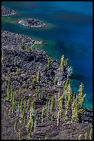 Volcanic shore of Wizard Island seen above. Crater Lake National Park ( color)