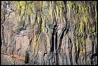 Cliff detail. Crater Lake National Park ( color)