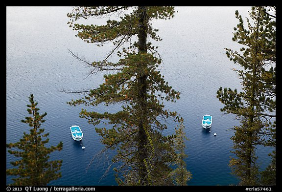 Tour boats seen between trees, Cleetwood Cove. Crater Lake National Park (color)