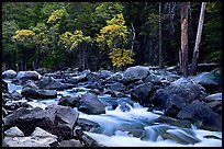South Fork of  Kings River in autumn,  Giant Sequoia National Monument near Kings Canyon National Park. California, USA ( color)
