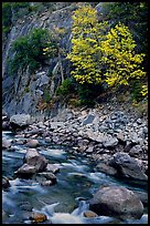 South Fork of  Kings River in autumn,  Giant Sequoia National Monument near Kings Canyon National Park. California, USA (color)
