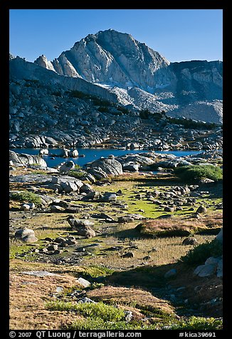 Alpine meadow, lake, and Mt Giraud, Dusy Basin. Kings Canyon National Park, California, USA.