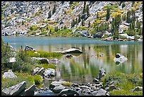 Lake and tree reflections, Lower Dusy Basin. Kings Canyon National Park ( color)