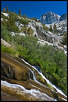 Waterfall, wildflowers and mountains, Le Conte Canyon. Kings Canyon National Park, California, USA.