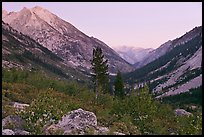 Looking south in Le Conte Canyon at dusk. Kings Canyon National Park, California, USA. (color)