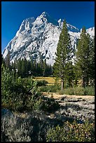 Trees and Langille Peak, Big Pete Meadow, Le Conte Canyon. Kings Canyon National Park ( color)