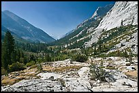 Rocks and meadows, Le Conte Canyon. Kings Canyon National Park, California, USA. (color)