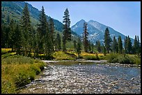 Glistening waters in middle Fork of the Kings River, Le Conte Canyon. Kings Canyon National Park, California, USA. (color)