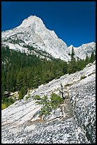 Langille Peak and Granite slab in Le Conte Canyon. Kings Canyon National Park, California, USA. (color)