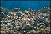 Boulders in meadow above Le Conte Canyon. Kings Canyon National Park ( color)
