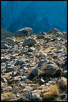 Boulders in meadow and Le Conte Canyon walls. Kings Canyon National Park ( color)