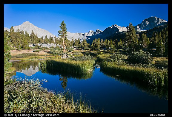 Grasses, creek, and Columbine Peak. Kings Canyon National Park (color)