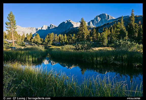 Mountains reflected in calm creek, late afternoon, Lower Dusy basin. Kings Canyon National Park, California, USA.