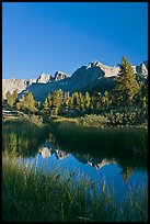 Grasses and mountains reflections, Lower Dusy basin. Kings Canyon National Park, California, USA.
