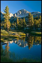 Trees and mountains reflected in calm creek, Lower Dusy basin. Kings Canyon National Park, California, USA.