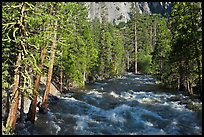 Roaring River in the spring. Kings Canyon National Park ( color)